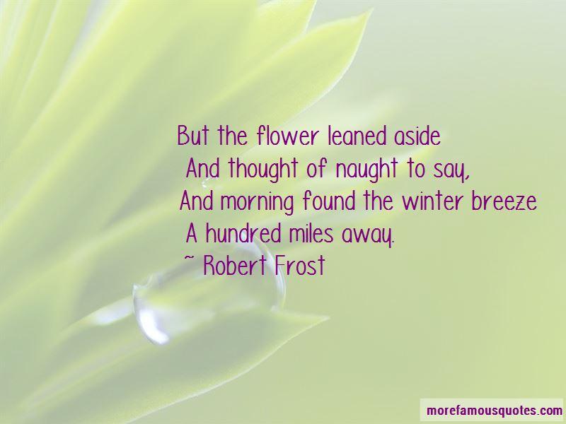 Winter Breeze Quotes
