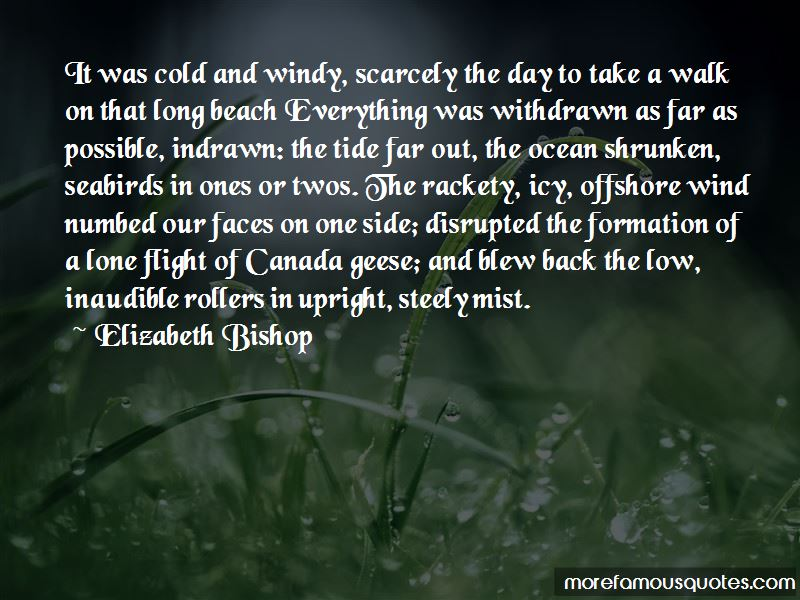Long Walk On The Beach Quotes Pictures 2