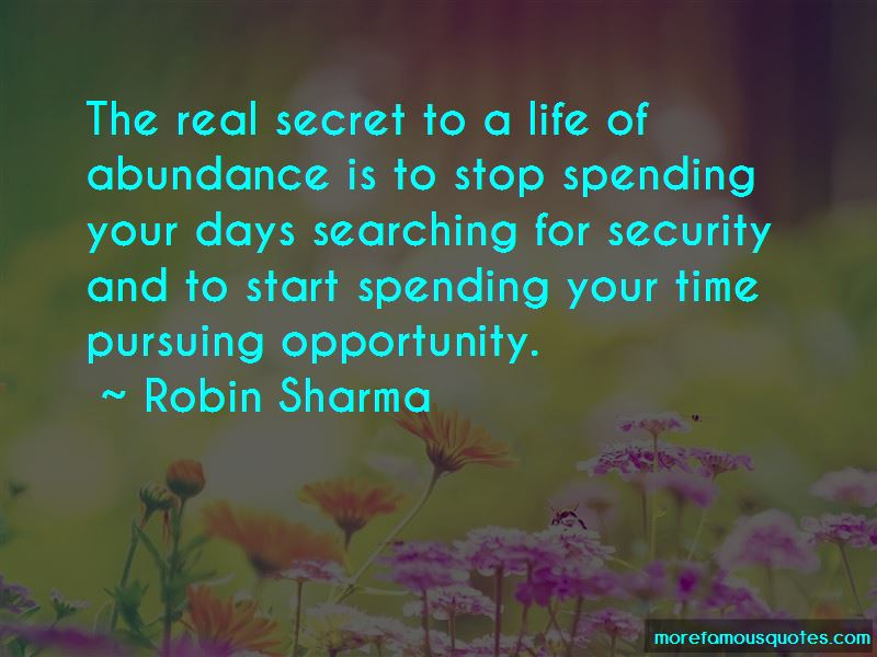 Pursuing Opportunity Quotes