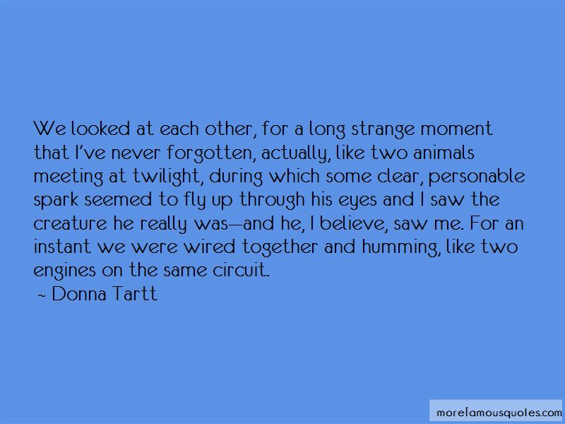 Spark In My Eyes Quotes Pictures 2