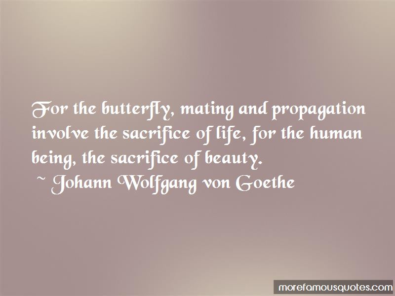 Butterfly Mating Quotes