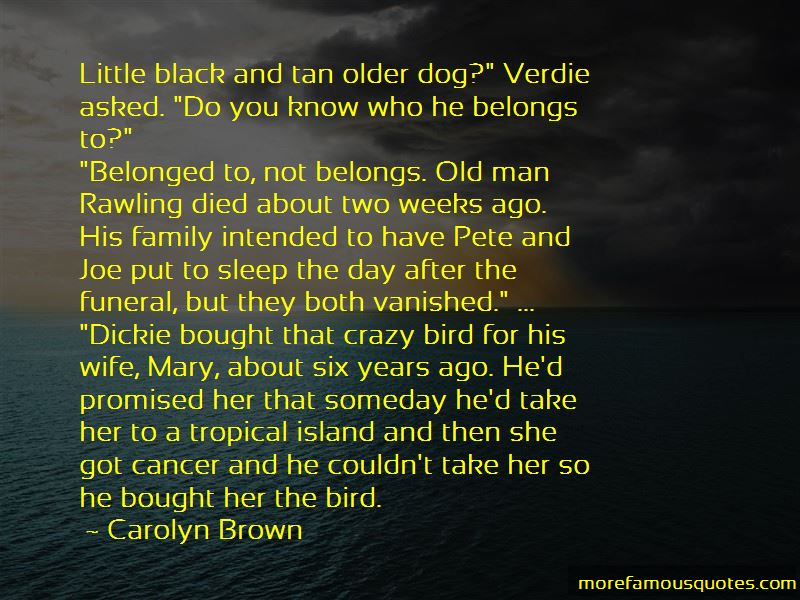 Dog Funeral Quotes