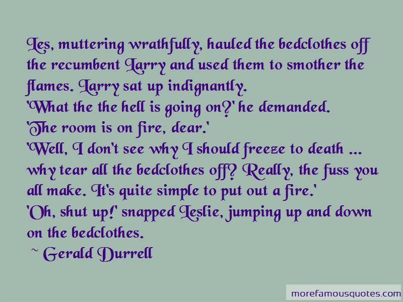 Going Down In Flames Quotes Pictures 4