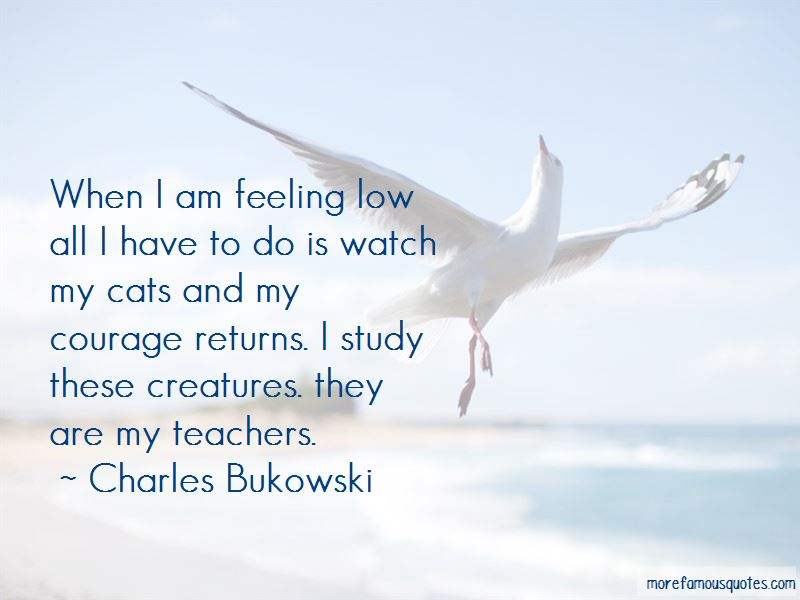 I Am Feeling Low Quotes