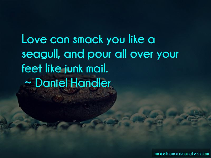 Seagull Quotes