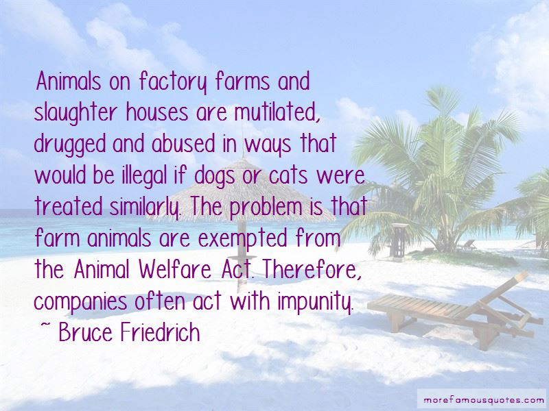 Animal Farm Slaughter Quotes Top 1 Quotes About Animal Farm