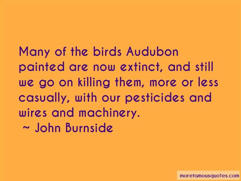 Audubon Quotes Pictures 4