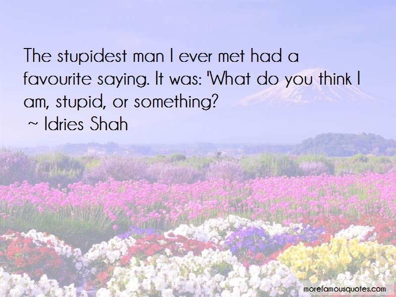 Do You Think I Am Stupid Quotes