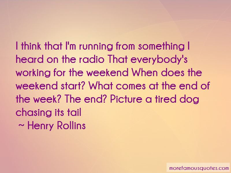 Dog Chasing Tail Quotes Pictures 3