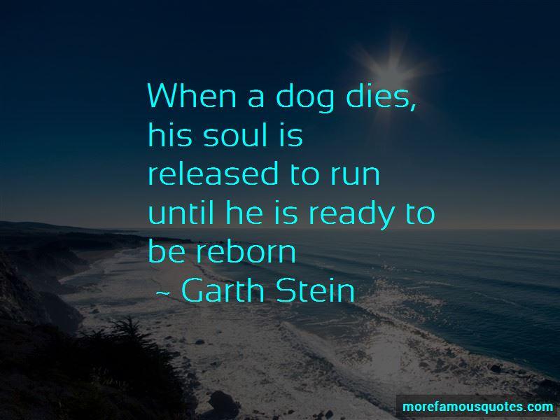 Dog Dies Quotes Pictures 4