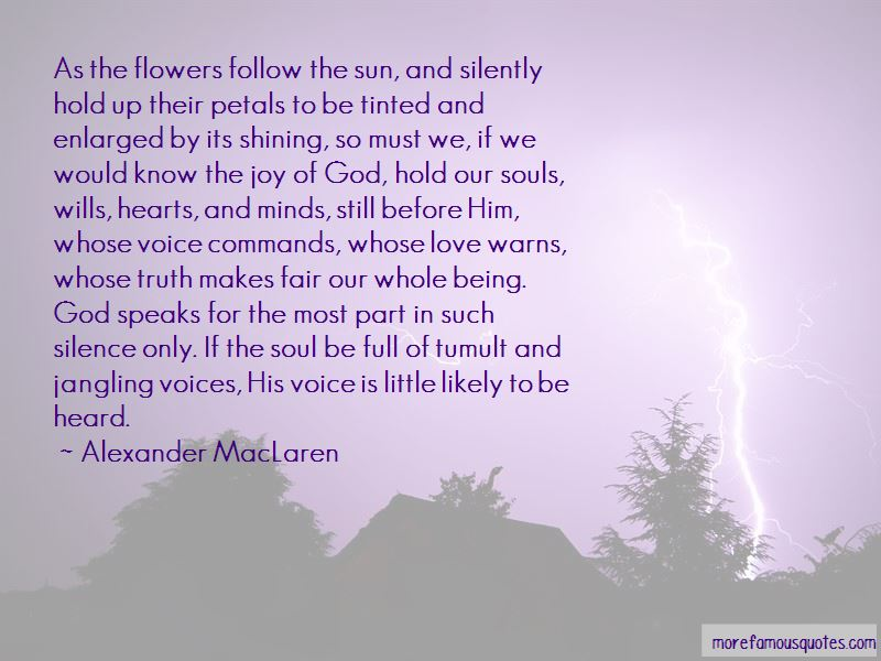 Follow The Sun Quotes Pictures 2