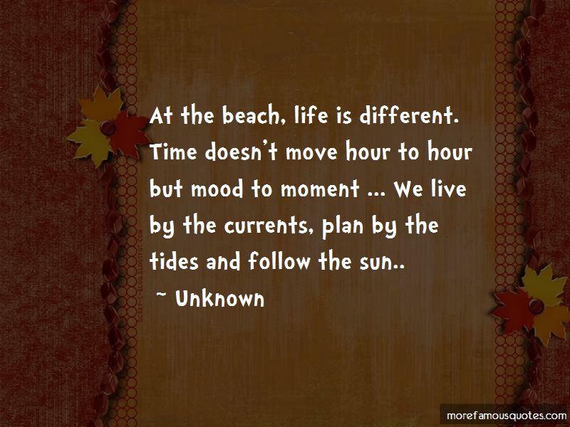 Follow The Sun Quotes