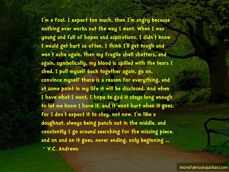 I Won't Get Hurt Again Quotes