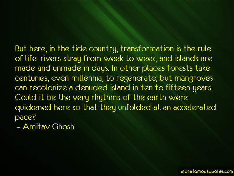 Island Quotes Pictures 2