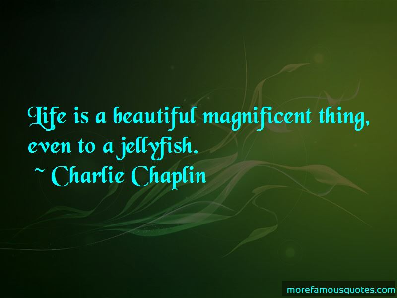 Jellyfish Life Quotes Pictures 4