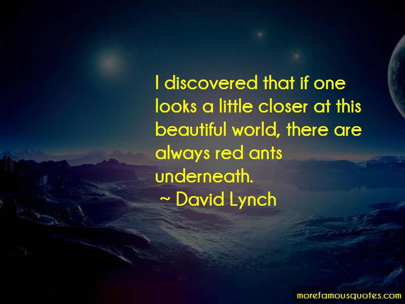 Red Ants Quotes