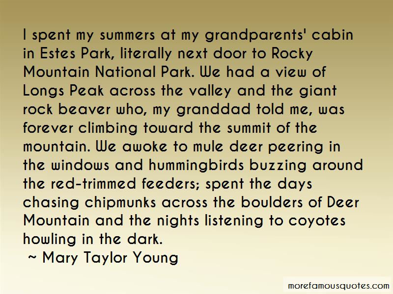 Rock Mountain Climbing Quotes