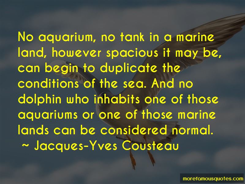 Sea Aquarium Quotes Pictures 2