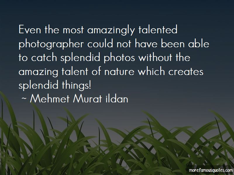 Talented Photographer Quotes