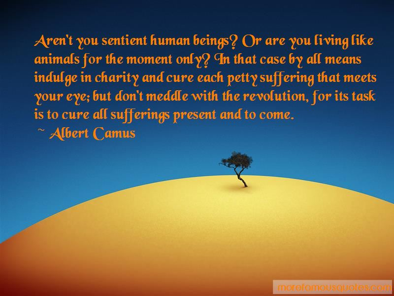 Animals Sentient Beings Quotes Pictures 3