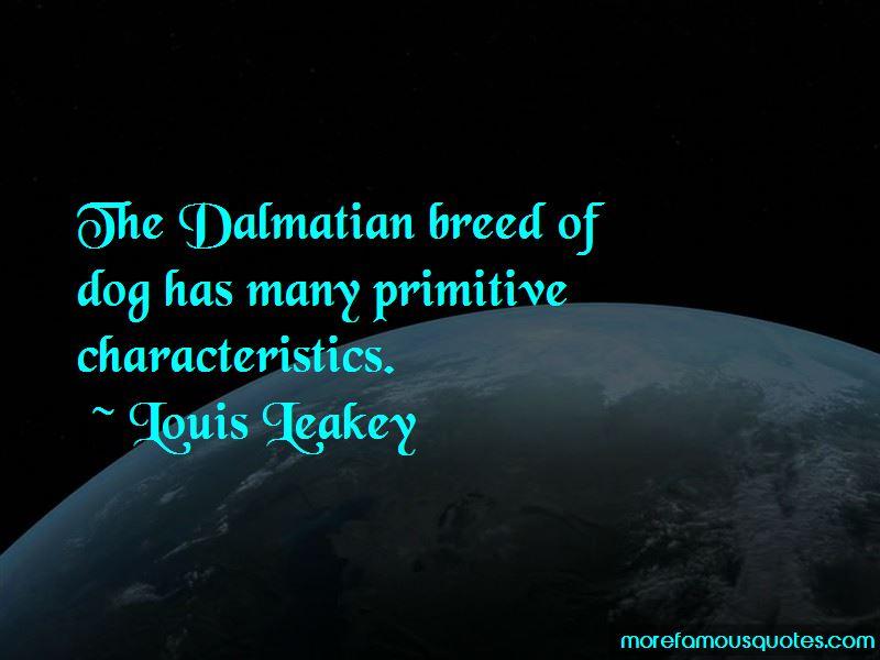 Dalmatian Dog Quotes