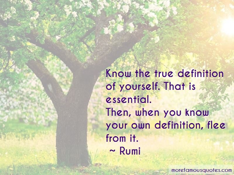 Definition Of Quotes Pictures 2