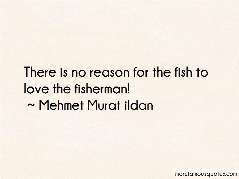 Fisherman Love Quotes