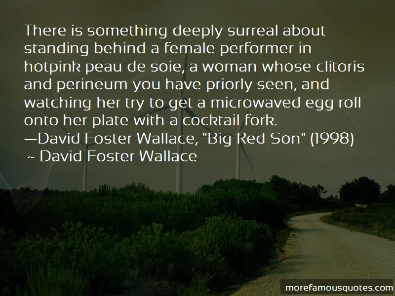 Foster Wallace Quotes Pictures 4