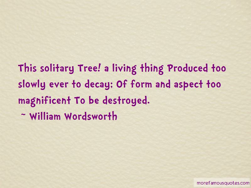 Solitary Tree Quotes Pictures 2