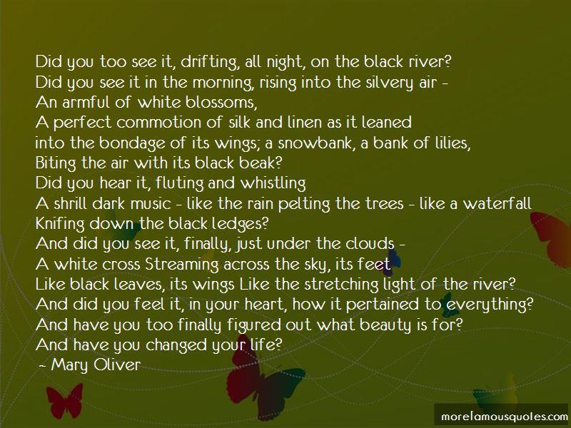 Dark Heart Rising Quotes