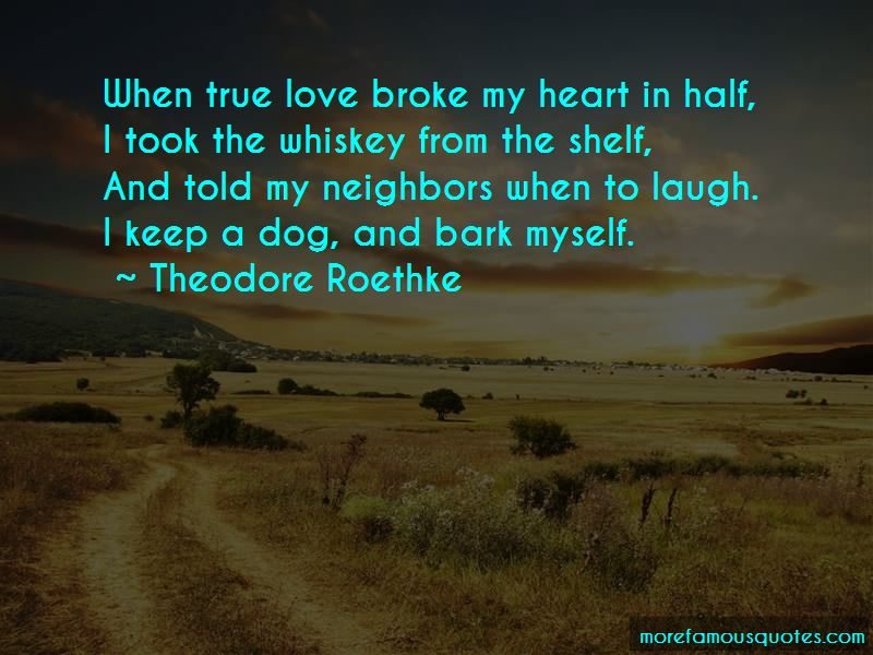 Dog True Love Quotes Pictures 4
