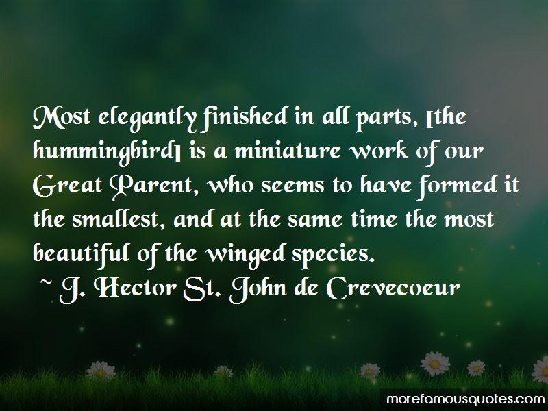 Elegantly Beautiful Quotes