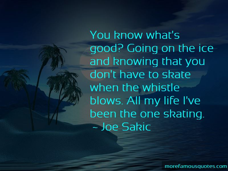 Good Skating Quotes Pictures 2