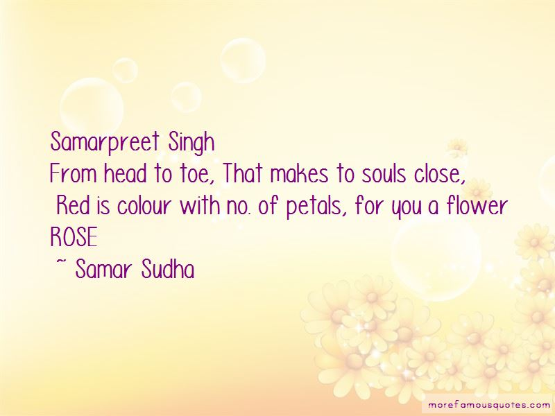 Red Rose Petals Quotes Pictures 2