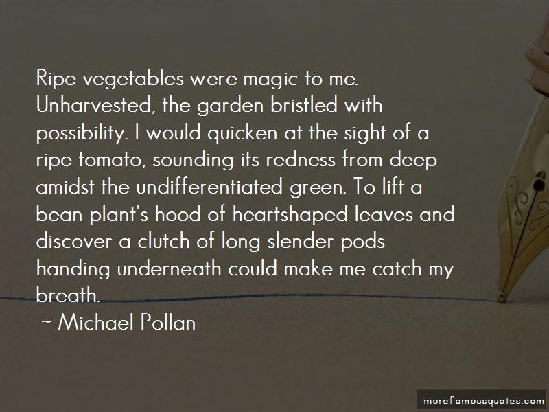 Vegetables Garden Quotes Pictures 2