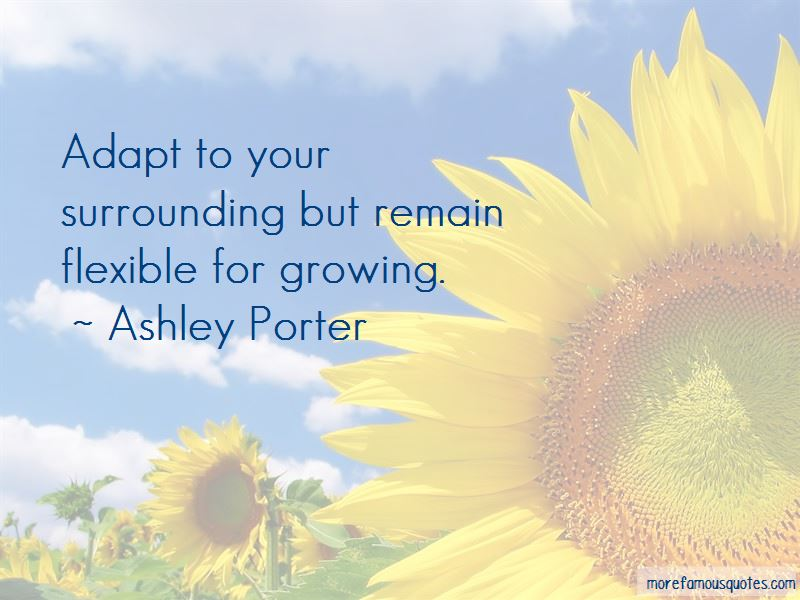 Your Surrounding Quotes Pictures 4