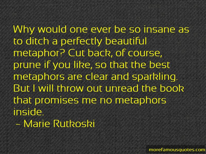 Best Metaphors Quotes