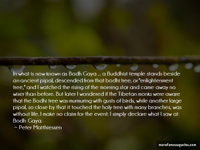 Bodhi Quotes Pictures 4