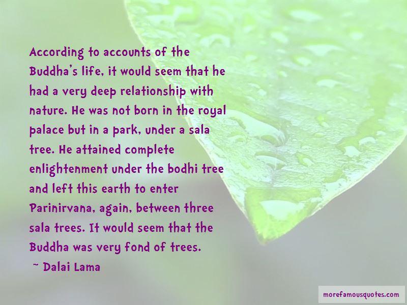 Bodhi Quotes