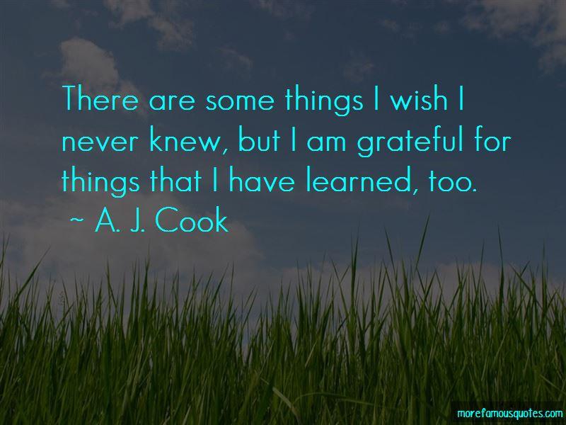 I Wish I Never Knew Quotes