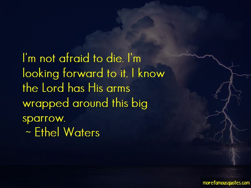 I'm Not Afraid To Die Quotes