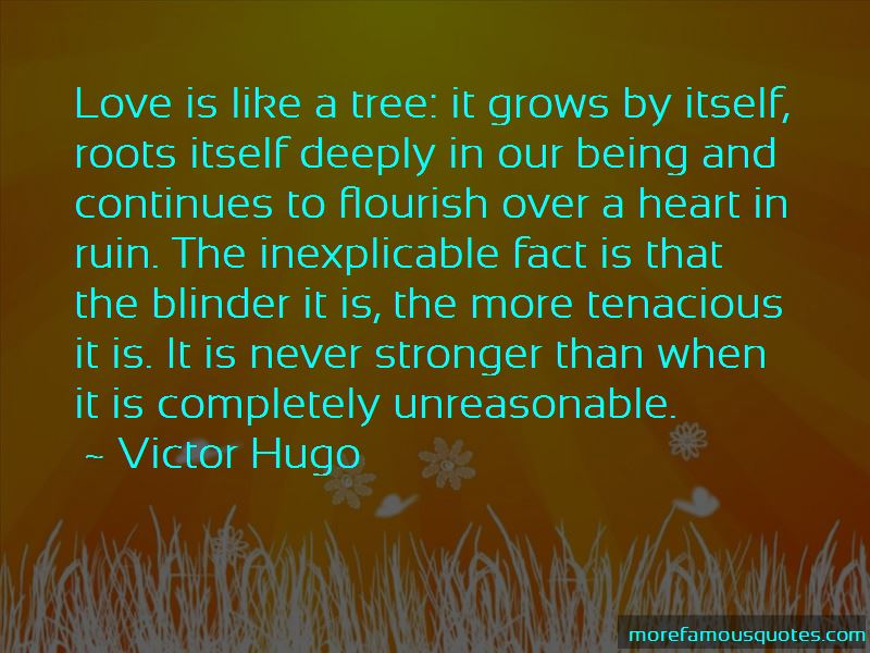Love Is Like A Tree Quotes Pictures 4