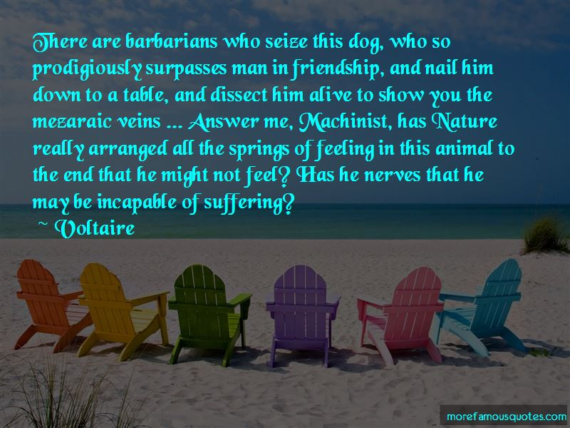 Man Dog Friendship Quotes Pictures 3