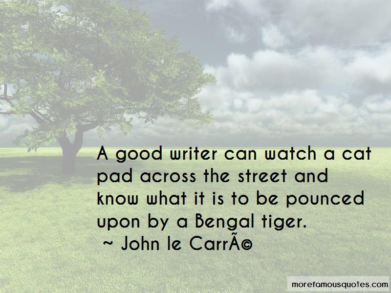 Bengal Cat Quotes