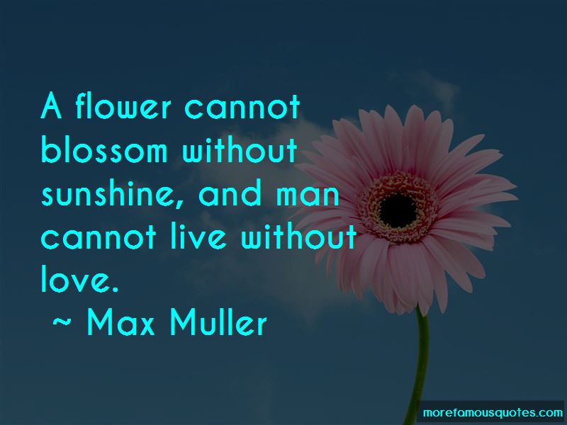 Flower And Sunshine Quotes