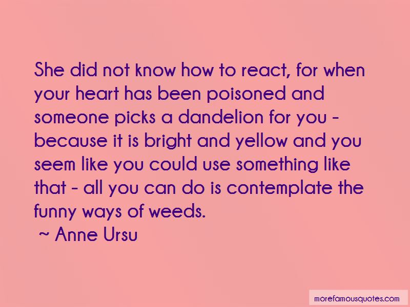 Funny Dandelion Quotes