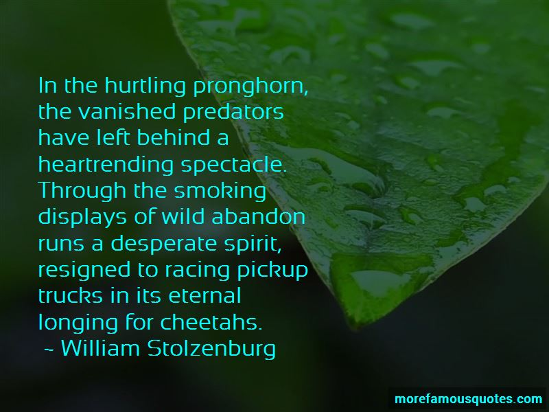 Pronghorn Quotes