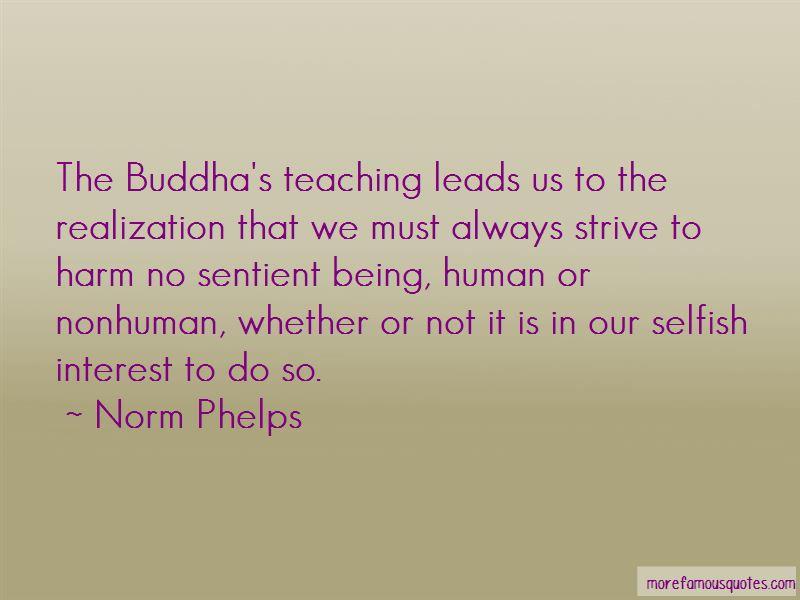 Buddha's Teaching Quotes