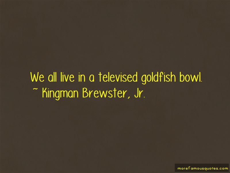 Goldfish Bowl Quotes Pictures 4