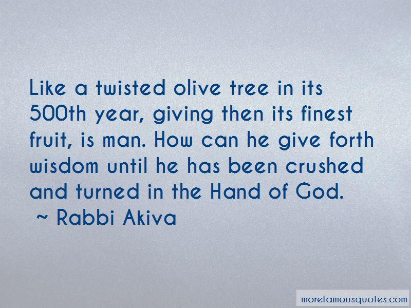 Olive Tree Quotes